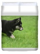 Fluffy Alusky Puppy Stalking In Green Grass Duvet Cover