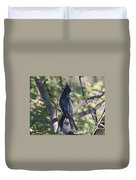 Silky Flycatcher Duvet Cover