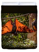Flying Foxes Duvet Cover
