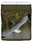 Flying Sea Gull - Eugene Oregon Duvet Cover