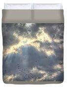 Flying Through Sun Rays 2 Duvet Cover
