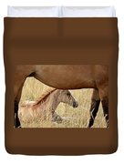 Foal And Mare In A Saskatchewan Pasture Duvet Cover