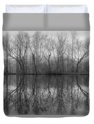 Foggy Lagoon Reflection #3 Duvet Cover