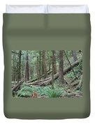 Forest And Ferns Duvet Cover