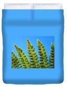 Forest Ferns Art Prints Blue Sky Botanical Baslee Troutman Duvet Cover