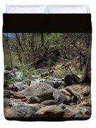 Forest Floor Near Oak Creek Duvet Cover