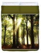 Forest Rays Duvet Cover