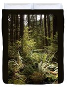 Forest Sunlight And Shadows  Duvet Cover