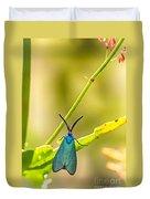 Forester Moth  Duvet Cover