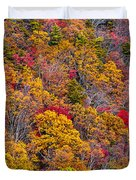 Fort Mountain State Park Cool Springs Overlook Duvet Cover