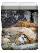Fort Worth Zoo Sleepy Lion Duvet Cover