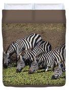 Four For Lunch - Zebras Duvet Cover