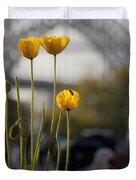 Four Poppies With Harbour Bridge Backdrop Duvet Cover