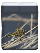 Four Spotted Chaser Duvet Cover
