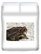 Fowler's Toad #2 Duvet Cover
