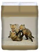 Fox Cubs At Play II Duvet Cover