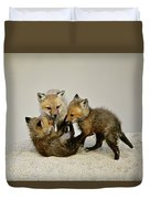Fox Cubs At Play Duvet Cover