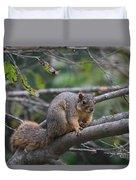 Fox Squirrel On A Branch  Duvet Cover