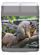 Fox Squirrel On A Branch - Southern Indiana Duvet Cover