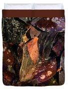 Fragile Frames Duvet Cover