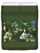 Framed Cardinals In Spring Duvet Cover