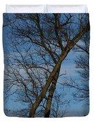 Framed In Oak - 2 Duvet Cover