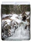 Freeze On The Basin Trail Nh Duvet Cover