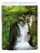 Fresh Green Forest In Spring At Lepenica River Gorge At Sunikov  Duvet Cover