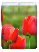 Fresh Spring Tulips Flowers With Water Drops In The Garden  Duvet Cover