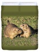 Friendly Prairie Dogs Duvet Cover