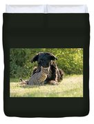 Friendships In The Animal World Is Possible Duvet Cover