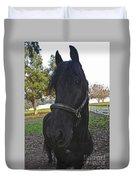Friesian Horse Head Duvet Cover