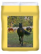 Friesian Horses - Pasture Duvet Cover