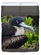 Frigate Bird In Nature Duvet Cover