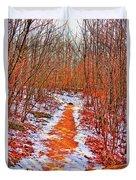 Frigid Walk Duvet Cover