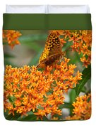 Frittalary Milkweed And Nectar Duvet Cover