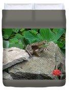 Frog On A Rock Duvet Cover