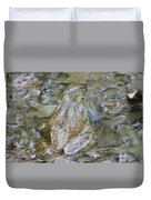 Frogs Eye View Duvet Cover