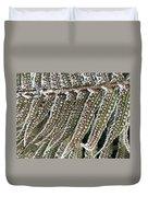 Frosty Fern - 365-322 Duvet Cover