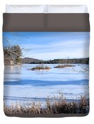 Frozen Bryant Pond Duvet Cover