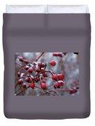 Frozen Fruit Duvet Cover