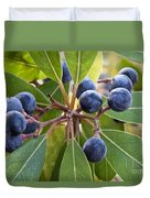 Fruit And Leaves Of The Red Bay Duvet Cover