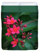 Jatrohpa Bush Blooms Duvet Cover