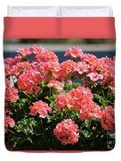 Full Bloom Geraniums  Duvet Cover
