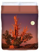 Full Moon Behind Ancient Bristlecone Pine White Mountains California Duvet Cover