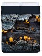 Fungi On Log Duvet Cover