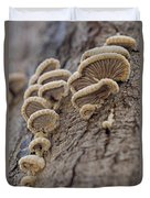 Fungui Growing On A Tree Trunk Duvet Cover