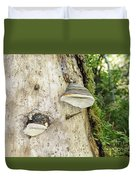 Fungus Grows On A Tree Trunk Duvet Cover