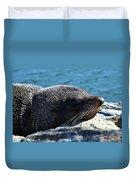 Fur Seal Duvet Cover
