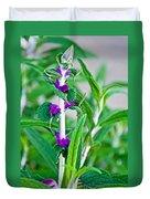 Salvia At Pilgrim Place In Claremont-california  Duvet Cover